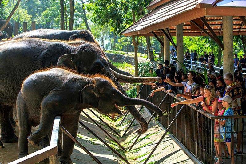 Bay Beach Resort Jomtien :Khao Kheow Open Zoo