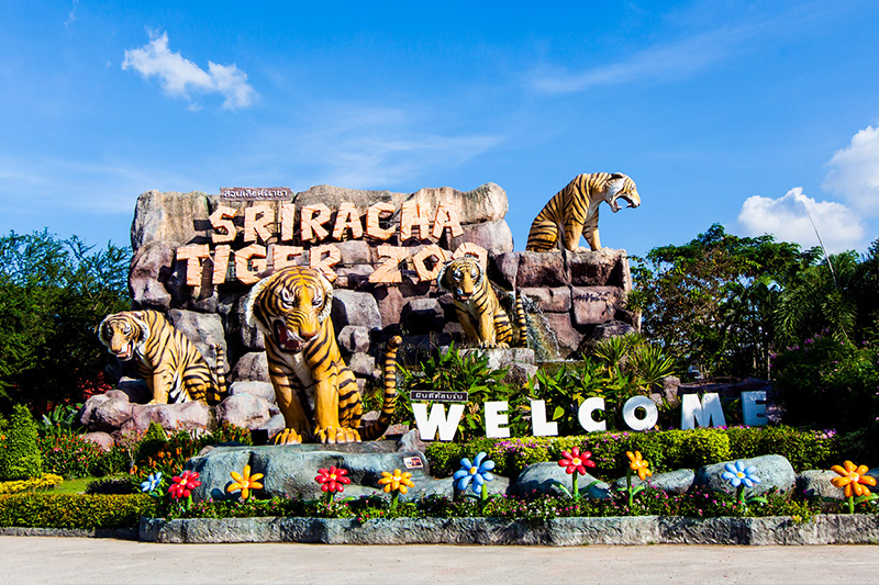 Bay Beach Resort Jomtien :Sriracha Tiger Zoo