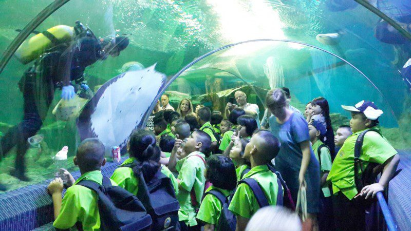 Bay Beach Resort Jomtien :Pattaya Underwater World